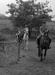 osztály lovasoktatás